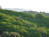 Montnegre and Montseny mountains