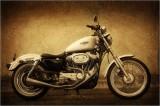 Harley Sportster 1200XL