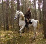 What a  good Horse!