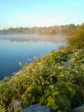 Baumann Lake Fall