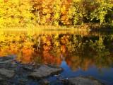 Rockford, IL in fall