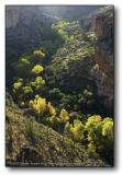 Superstitions : Sunrise Canyon
