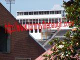 Victory Stadium 214a.jpg