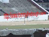 Victory Stadium 236a.jpg