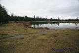 Pond Jan 10, 2009