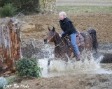 Bolender Horse Park,  Feb 2009 Clinic