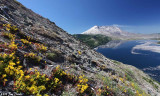 Mt St Helen and Spirit Lake