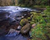 Recent Pacific Northwest  Pictures