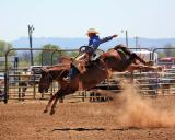 2006 Lewis County Pro Rodeo, Washington State, USA