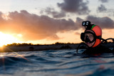 Susie, sunrise dive at The Rock