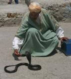 Snake Charmer 2.jpg