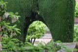 Alhambra Greenery.jpg