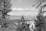Looking out over Mono Lake