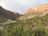 Gazing over the Yampa