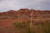 Across the Utah Desert