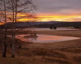 Sunset's Golden Colors