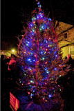 2010 Del Ray Christmas Tree Lighting, December 3rd