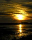Sunset at Chincoteague