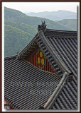 Yongdeuksa Buddhist Temple 용덕사 - Korea