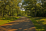 The Drive at Shiloh
