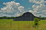 Barn with Green Roof