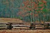 November Fence