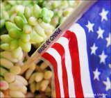Patriotism 2009