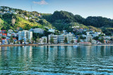 Oriental Bay in the Summertime