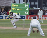 Franklin Ducks a bouncer (ball in the c of wickets)
