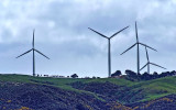 Makara wind farm