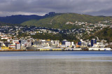 Wellington as seen from Petone
