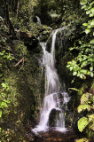 Small Waterfall up the Akatarawa Valley