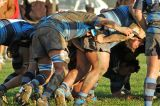People in Scrums