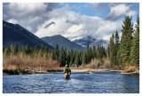 October 18, 2008 --- Elk River, British Columbia