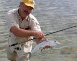 Bahamian Bonefish