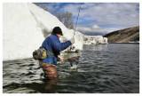 March 12, 2008 --- Bow River, Alberta