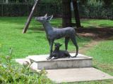 Dolores Olmedo Museum itzcuintli Dog