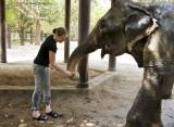 734_s_9221_snack after elephant shower.jpg