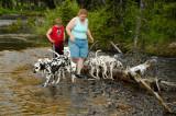 Lynne, Elliot, Dogs at Yellowstone