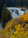Falls and Color