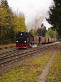 Narrow Gage Steam Train