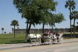 Fort and buggy in St. Augustine