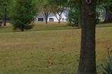 Neighbors barn at 150mm