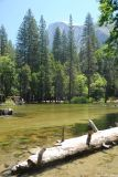 Half Dome viewed from the Lower Pines campground