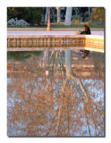 Quiet reflection