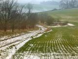 last of the snow near Raywell