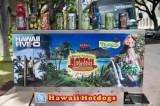 Somewhere in Honolulu
