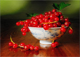 Red currants in a bowl - still life