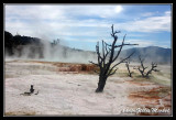 Martian landscapes ? No it's Yellowstone US NP
