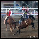 rodeo in Cody